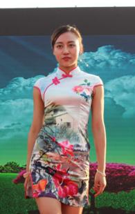 2016自主汽车品牌 黄河文化节—偃师站