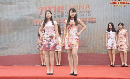 2016年自主汽车品牌黄河文化节 临清站