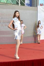 2016年自主汽车品牌黄河文化节 章丘站