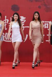 2017中国汽车黄河文化节临沂站车模